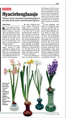 The Curious History of the Bulb Vase - Elsevier review